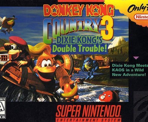 Donkey Kong Country 3: Dixie Kong's Double Trouble Game