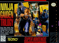 Ninja Gaiden Trilogy Cover Box